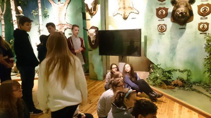 Zajęcia Edukacyjne Zorganizowane Przez Muzeum łowiectwa I